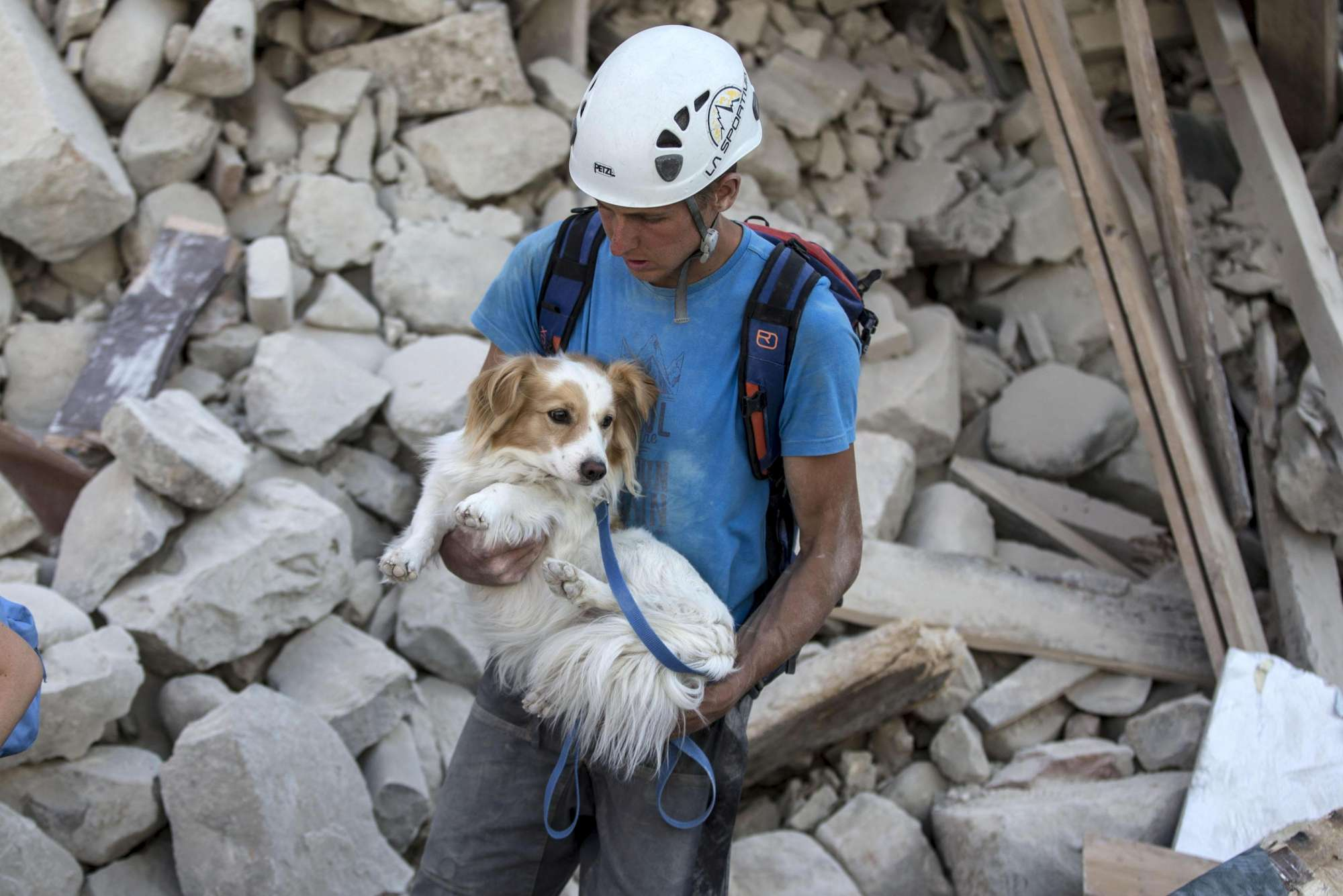 A volounteer with his dog works in Amatrice, central Italy, where a 6.1 earthquake struck just after 3:30 a.m., Italy, 24 August 2016. The quake was felt across a broad section of central Italy, including the capital Rome where people in homes in the historic center felt a long swaying followed by aftershocks. ANSA/ MASSIMO PERCOSSI