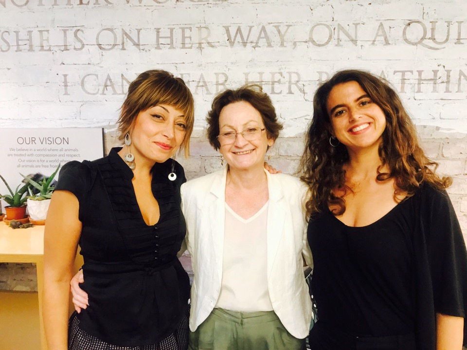 Manuela Giacomini with the CEO and the Legal Counsel of Animals Australia, Glenys Oogjes and Shatha Hamade.